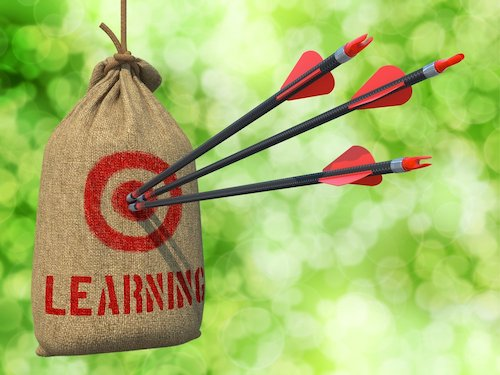 Learning - Three Arrows Hit in Red Target on a Hanging Sack on Natural Bokeh Background.